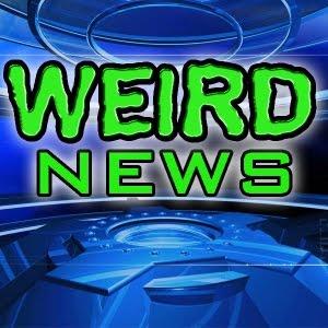 weird news photo