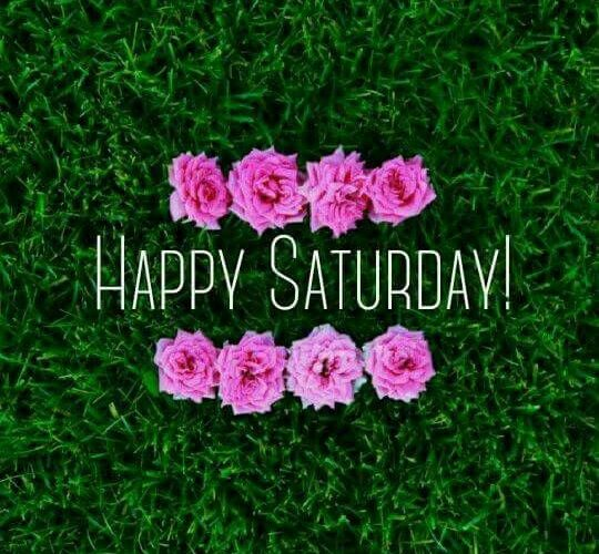 Happy Saturday Quotes Images Funny Love - Good Morning ...