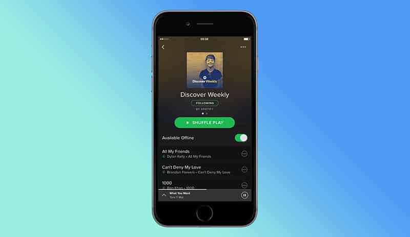 Spotify India Pricing